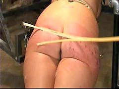 Caning, Freak, Freaks of nature, Caned, Freaks, Freakly