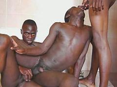 سكس افريقي, جنس افريقيا, زي افريقي, افارقة, سكس افريقيات, ساونا