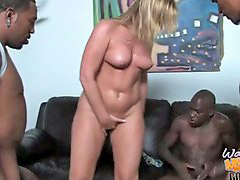 Flower tucci, Tucci flower, Cleanning, Tucci, Sizzling, Flowers tucci