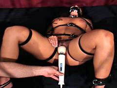 Nympho, Submissions, Submissed, Nightmares, Submiss, Submission