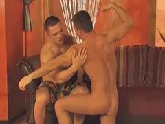 Musculoso gay, Musculoso, Musculosas, Musculosa, Musculosos, Homosexual