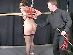Bondage, Lexi bell, Lon to, Oked, Stickings, Lexy belle