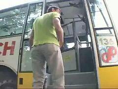 Naturel otobüs, Doğal, Otobüs, Otobüs,, Otobüs otobüs