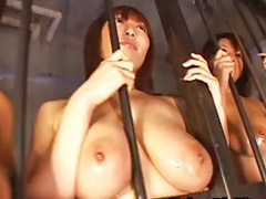 Japanese, Tit japan, Huge sex, Japanese kissing, Japanese tits big, Asian tits